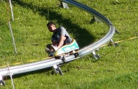 Mountain Coaster Sled