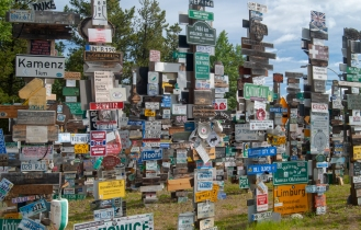 signpost forest (1 of 2)
